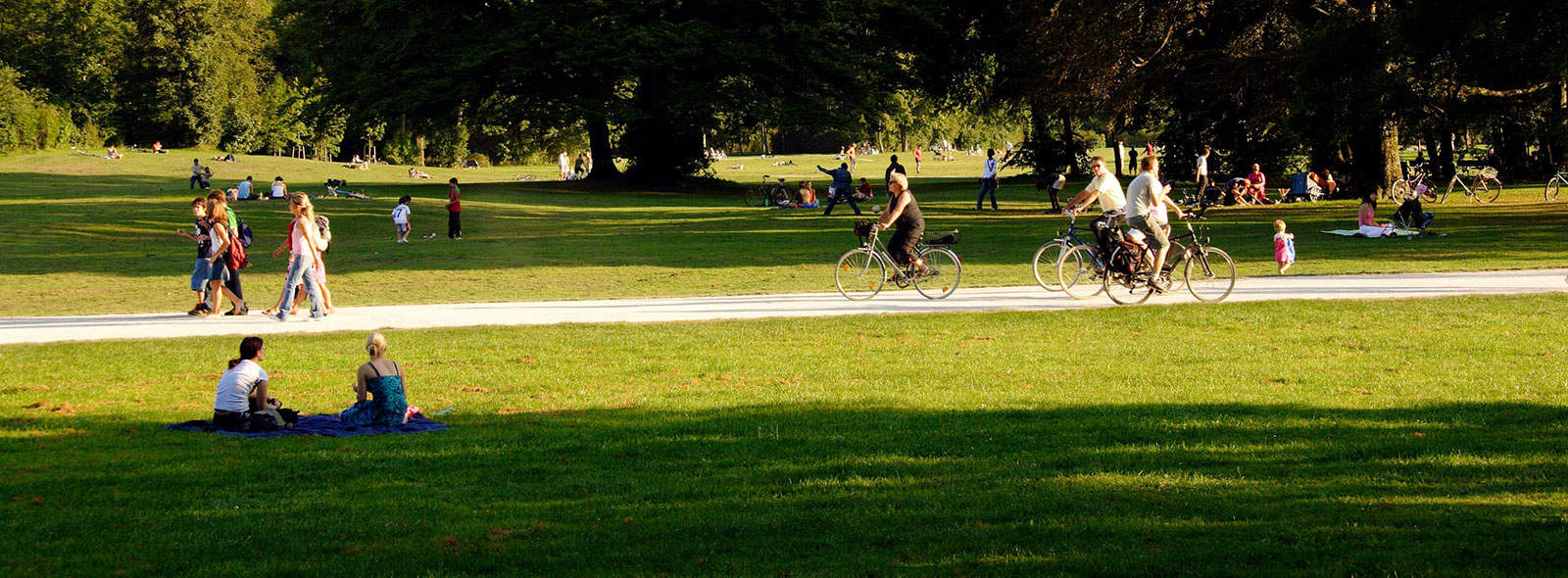 people sitting in sunshine on grass in a park